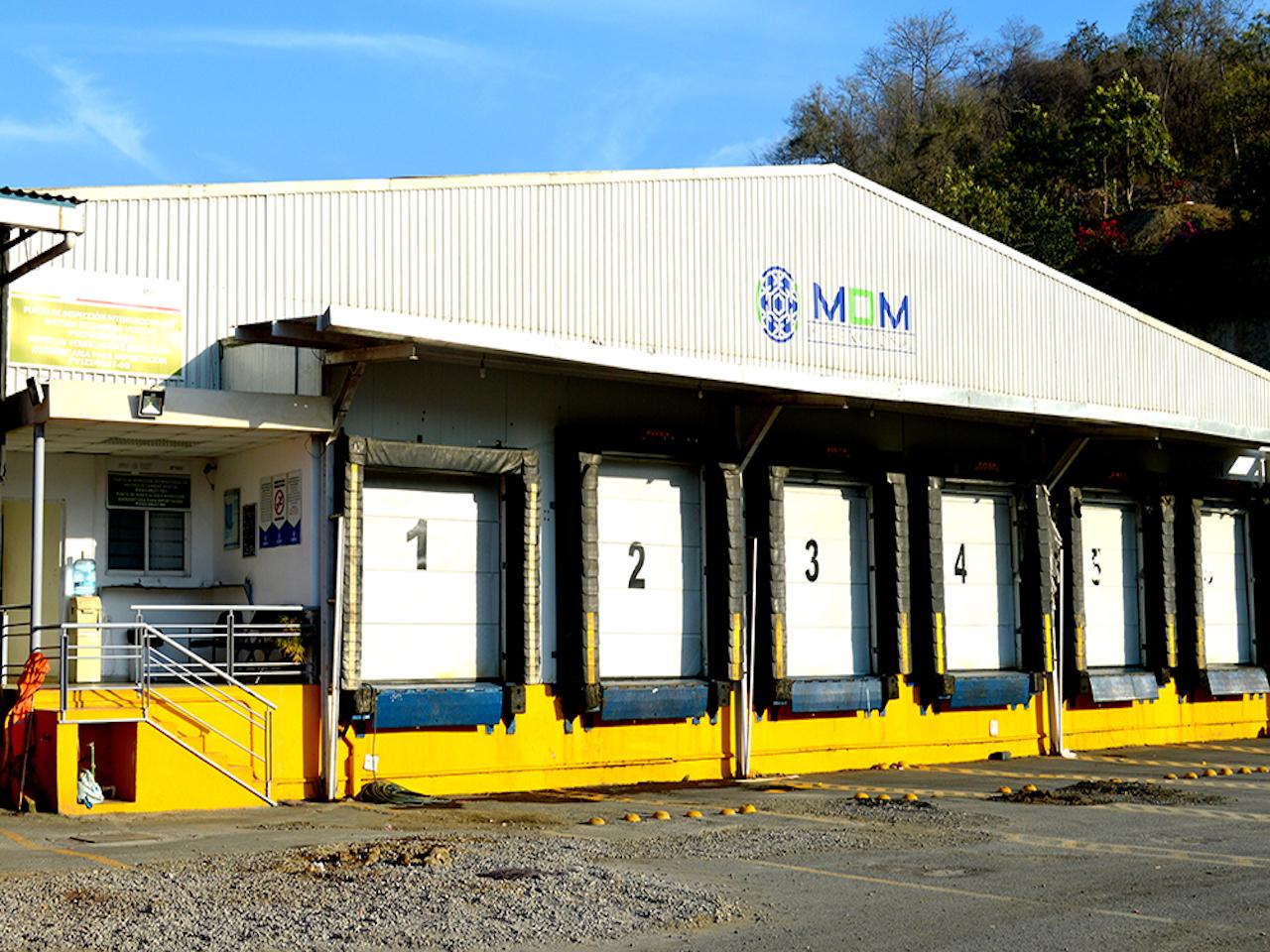 MDM INTERNACTIONAL SERVICE S.A. DE C.V. MOVIMIENTO DE PERSONAL